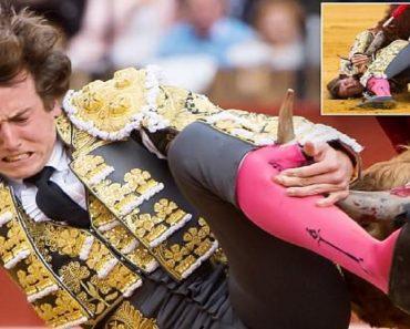 Roman Collado bullfighting