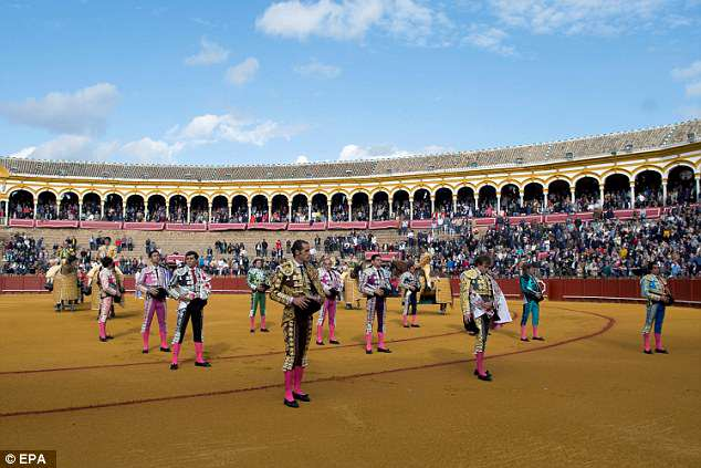 Roman Collado bullfighting